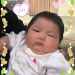 管理のお家に赤ちゃん誕生♪のサムネイル画像
